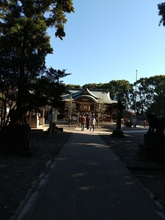 20210102_姉崎神社茅の輪.JPG